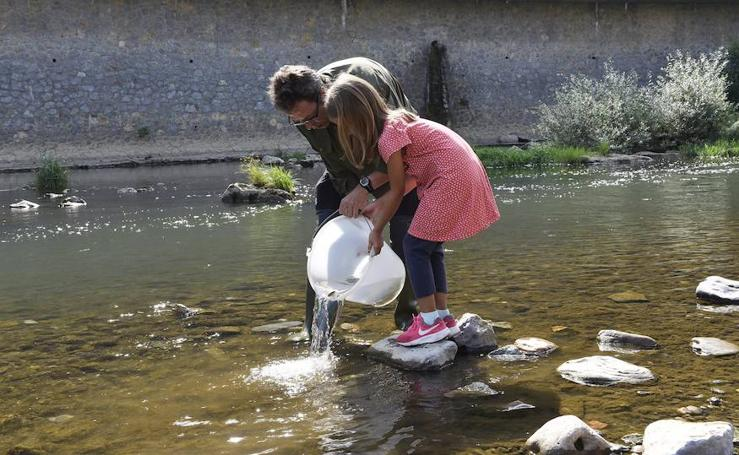 Objetivo: repoblar el Oria de salmones