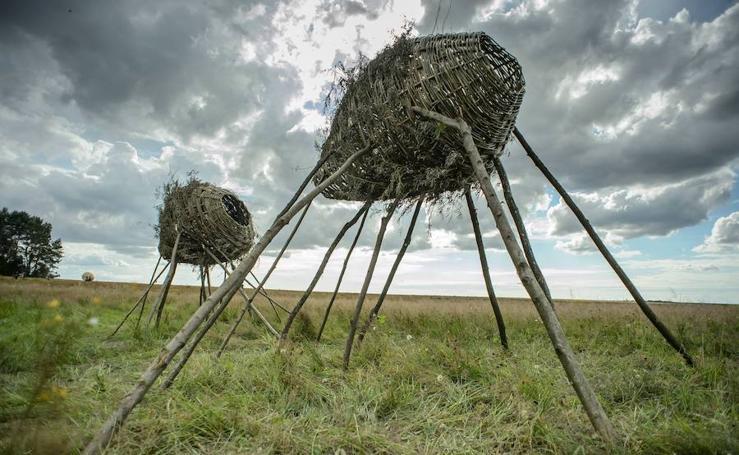 Arte en la naturaleza: las obras del 7º Festival de Land Art