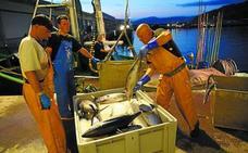 Satisfacción en la flota vasca por el aumento del permiso de pesca de bonito y atún
