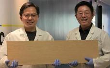 Crean una supermadera tan resistente que puede sustituir al acero