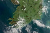 El referéndum sobre la legalización del aborto en Irlanda será el 25 de mayo