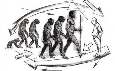 La mecánica de caminar similar a la humana evolucionó antes que el género Homo