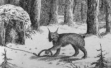A la caza del 'katamotz' en los montes guipuzcoanos