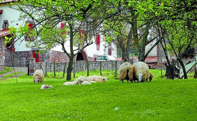 Casi un millón y medio de euros en ayudas a proyectos en el sector agrario
