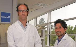 Desarrollan en Donostia un fármaco para frenar un agresivo cáncer sanguíneo