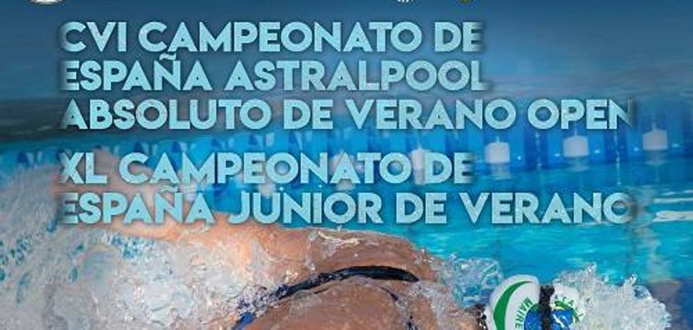 Once absolutos y dieciseis junior en el Campeonato de España de Natación