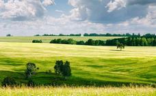 Aparecen en Reino Unido unos extraños círculos que podrían ser de una civilización antigua