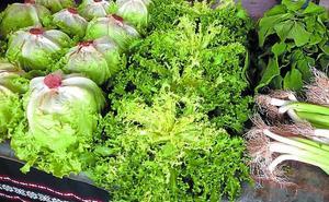 Abundancia de todo tipo de hortalizas