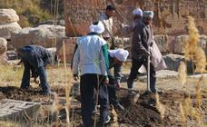 El Museo Arqueológico abre un 'crowdfunding' para financiar un proyecto en Egipto