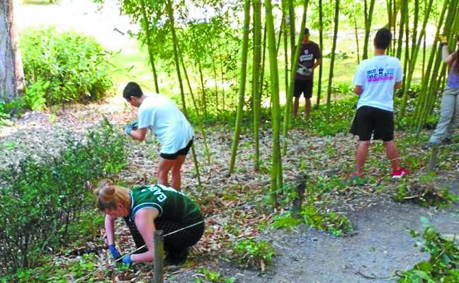 25 jóvenes toman parte en un campo de voluntariado en Bertiz