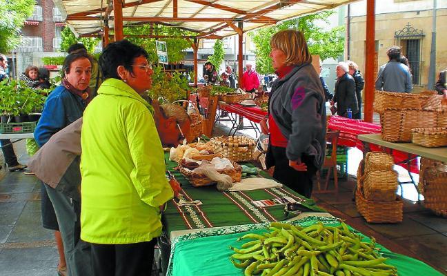 Quinta edición de 'Txakolin eguna', que incluye degustación de bonito