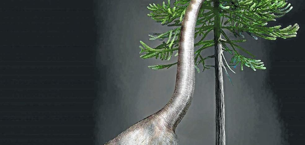 'Bigfoot' era un dinosaurio
