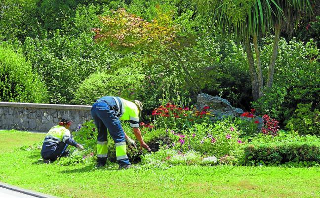 Aprobada la licitación de los nuevos servicios de limpieza viaria y jardinería
