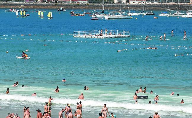 Localizan en aguas de Donostia dos ejemplares de 'carabela portuguesa'