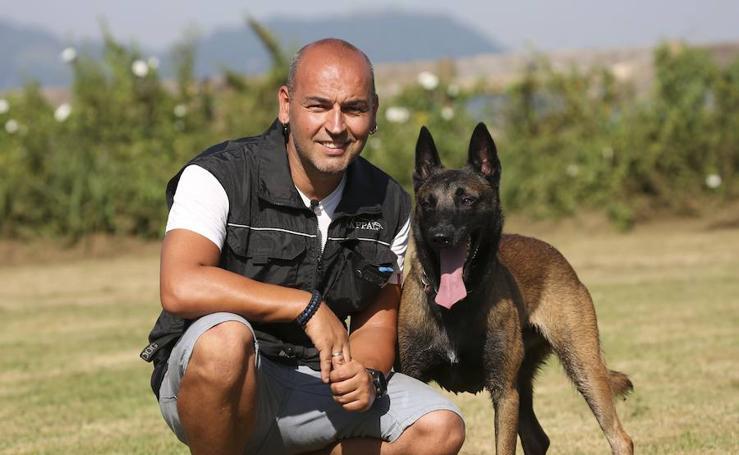 Adiestramiento de perros en Oiartzun