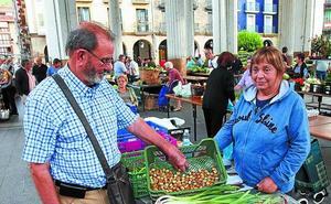 Las primeras avellanas en el mercado llegaron desde Itsaso