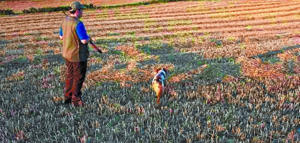 Vía libre a la caza menor con la media veda