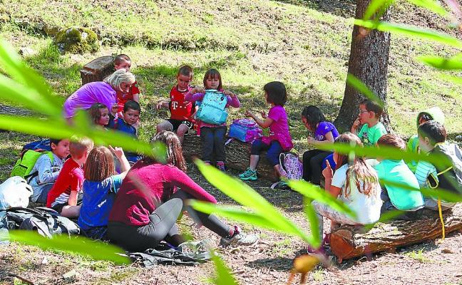 Baso Eskola lleva el bosque al aula de los escolares de Samaniego y Laskorain