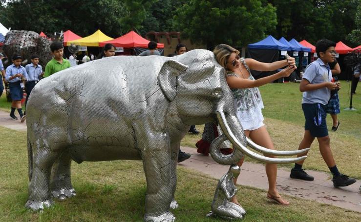 Los elefantes, protagonistas en Nueva Delhi