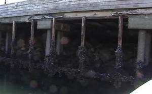 Concejales de Vigo alertaron del mal estado del muelle seis días antes del derrumbe