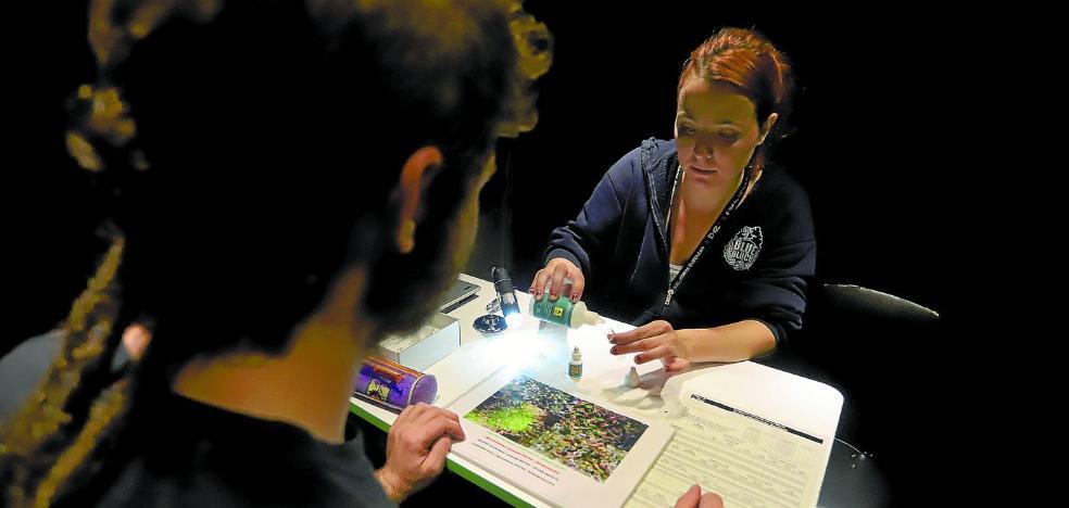 La cocaína, camino de convertirse en la segunda droga más consumida en fiestas en Euskadi