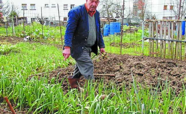 Un concurso premiará la mejor huerta de todo el valle de Leintz