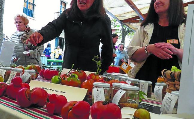 La Semana del Tomate de Aretxabaleta se celebrará del 17 al 22 de septiembre