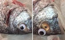 Una pescadería implanta ojos de plástico a sus pescados para que parezcan frescos