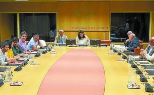 El Parlamento encarga a los expertos redactar el nuevo estatus sin valorar su encaje legal