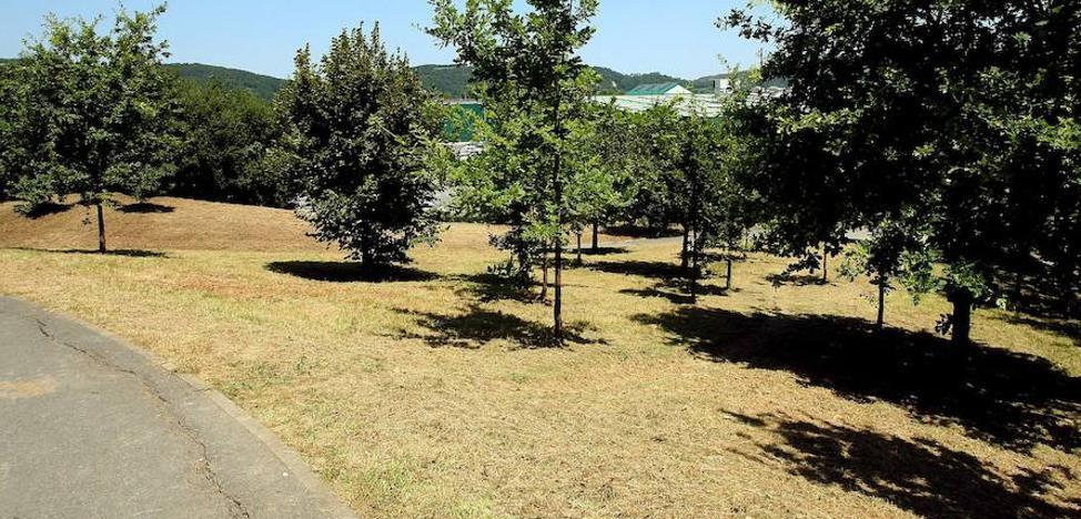 Más dinero para Parques y Jardines