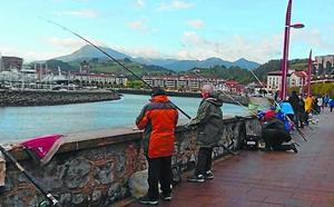 Izkiro gana el concurso intersocial de pesca al lanzado