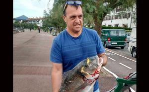 Pesca una dorada de más de siete kilos en Hondarribia