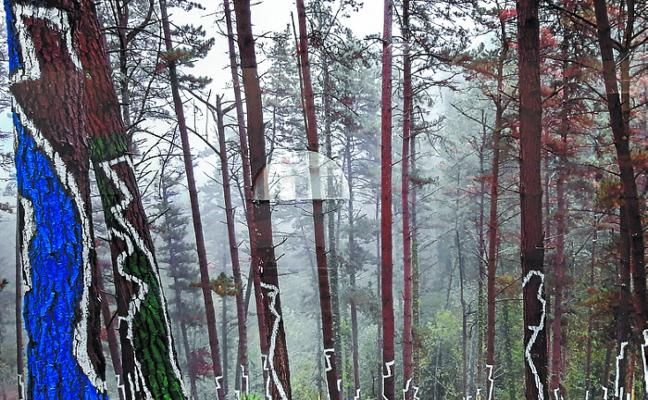 Merkatu plaza expone 'El Bosque de Oma', de Ibarrola
