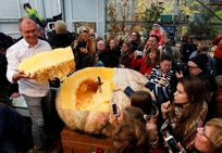 Una calabaza de más de 600 kilos