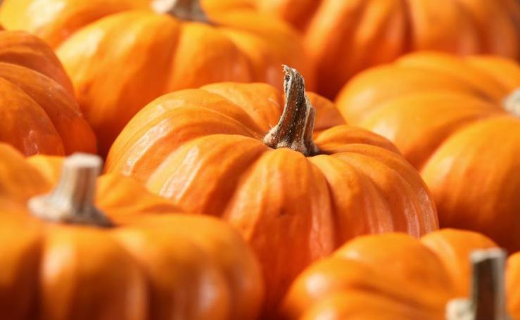 Los alimentos de otoño