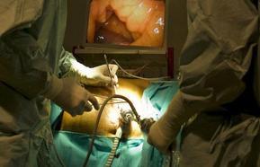 Unos 60.000 españoles necesitan hemodiálisis o trasplante renal