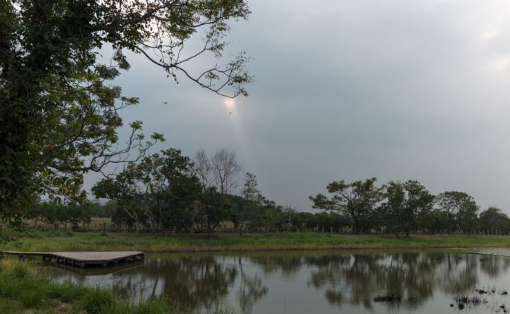 Reserva natural de Mai Po