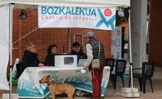 Consulta de Gure Esku Dago en Donostia e Irun