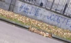 Condenan la paliza a un estudiante de la UPV en Vitoria por defender la unidad de España