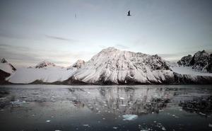 Una exposición muestra en Donostia la dura realidad del Ártico