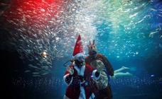 Un Santa Claus a remojo