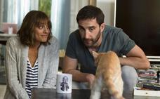 Dani Rovira y Martínez-Lázaro se enredan con un gato