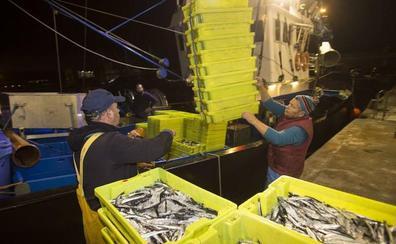 Los arrantzales vascos confían en lograr buenas cuotas de pesca de la UE para 2019