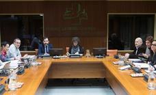 Los grupos parlamentarios presentan aportaciones críticas a las conclusiones de la ponencia de paz