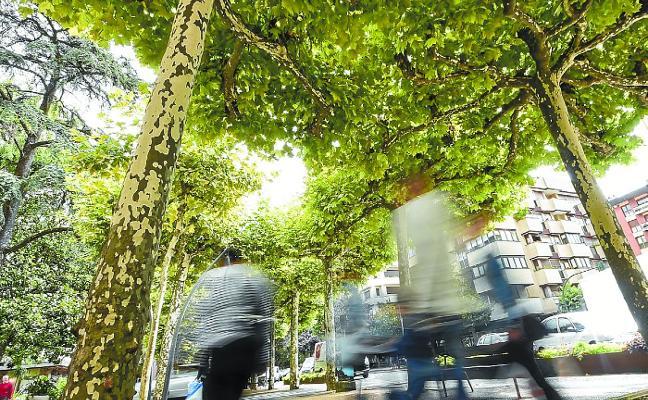 El proceso participativo Tolosatzen llega a 153 ciudadanos