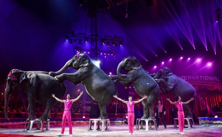 Lo mejor del circo