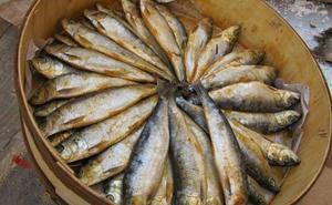 Comer pescados grasos reduce el riesgo de obesidad