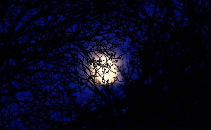 Las mejores imágenes de la 'Luna de Nieve'