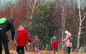 Plantación de 150 árboles y arbustos en Elorriaga, este domingo