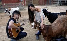 Un refugio para animales discapacitados